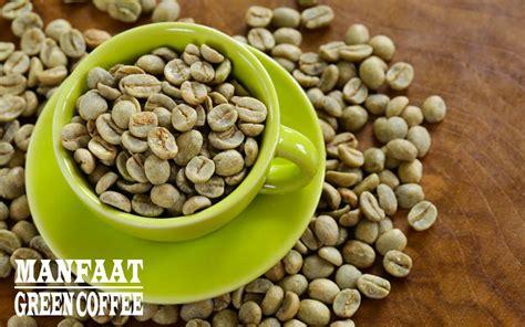 Dari Green Coffee 100 manfaat dan khasiat green coffee untuk kesehatan
