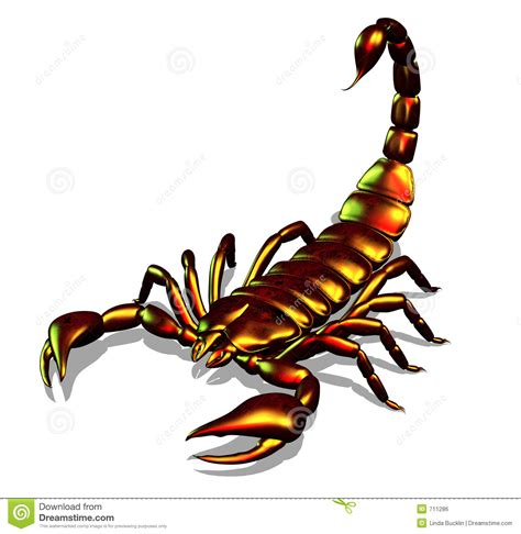 scorpion clipart scorpion clipart clipart suggest