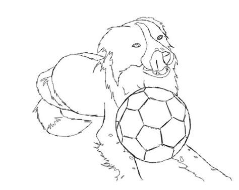 ringo border collie sketch by pebblerocker101 on deviantart