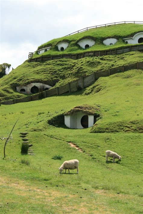 hobbit house new zealand hobbiton matamata new zealand for exploration desires