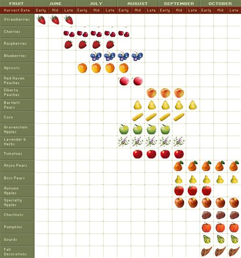 fruit by season river harvest seasons river county fruit loop