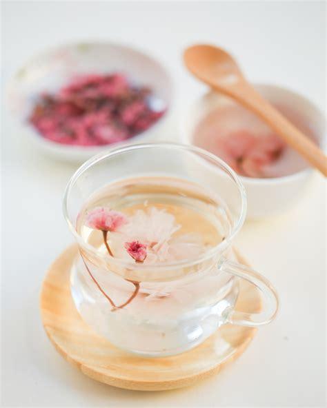 berbagai makanan berbahan dasar bunga sakura adventure