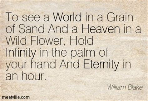 to hold infinity in the palm of your see the world in a grain of sand and a heaven in a