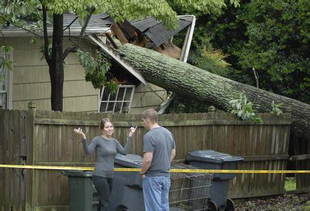 tree fell on house house tree falls on neighbors house salazar tree experts