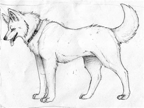 puppy sketch wolf sketch by pandoraswolf on deviantart