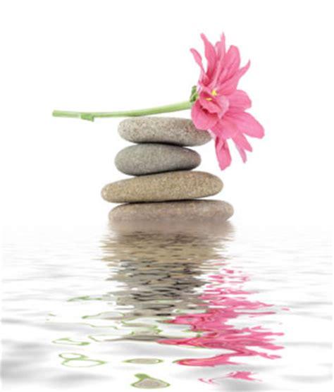 imagenes de flores zen foto mural zen piedras flor agua