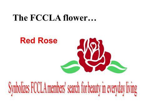 fccla colors all about fccla delaware fccla