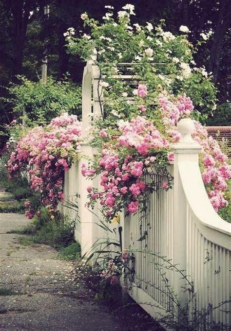 Pretty Garden Trellis Arbor Garden Gate