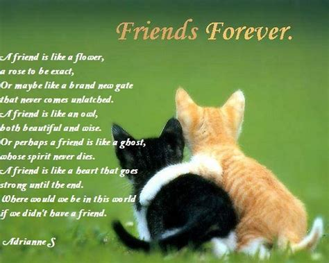 happy valentines day poems for friends 17 best ideas about friendship poems on quotes