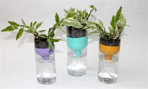 Handmade Things With Plastic Bottles - 10 creative ways to upcycle your plastic bottles mnn