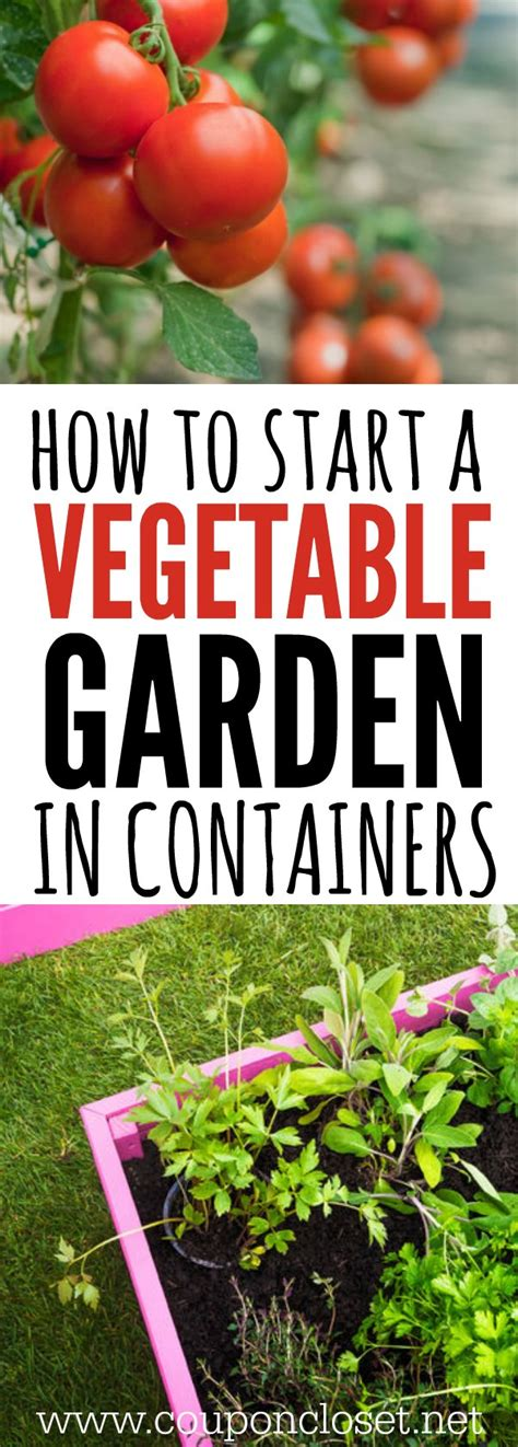 Container Gardening How To Start A Vegetable Garden How To Start A Vegetable Garden In Your Backyard