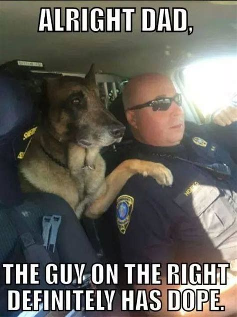 Law Dog Meme - pin by kaylyn best on funnies pinterest