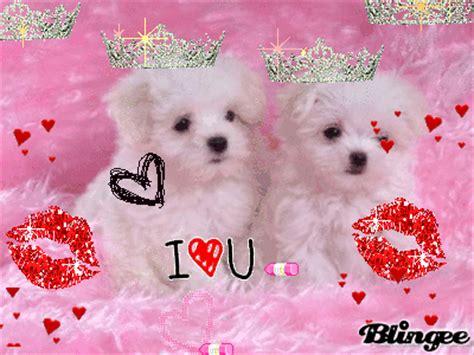 imagenes animadas bonitas y tiernas perritos tiernos picture 131044926 blingee com