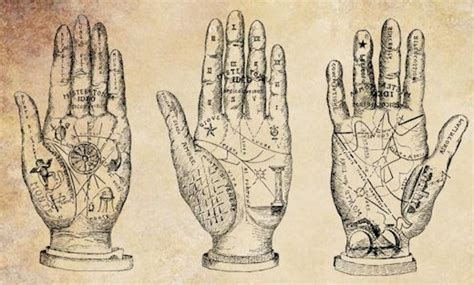 palm reading basic principles and top 10 basic palm reading guidelines top inspired