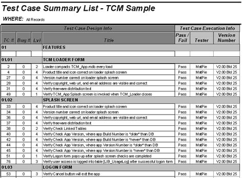 Sle Test Cases Template by Test Exle