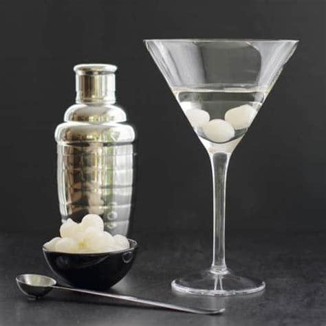 Classic Gibson Martini Recipe Magnolia Days