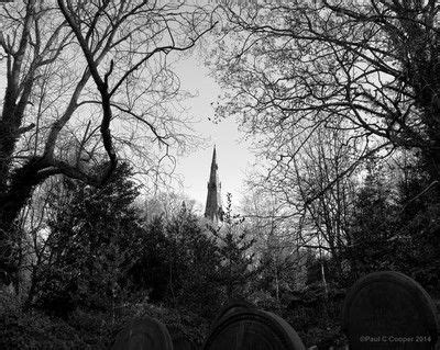 The Spire In The Woods 17 best images about black white photographs on