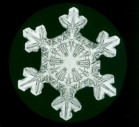 snowflake bentley book snowflakes the extraordinary micro photographs of winter