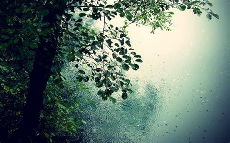 rain wallpaper  pc gallery