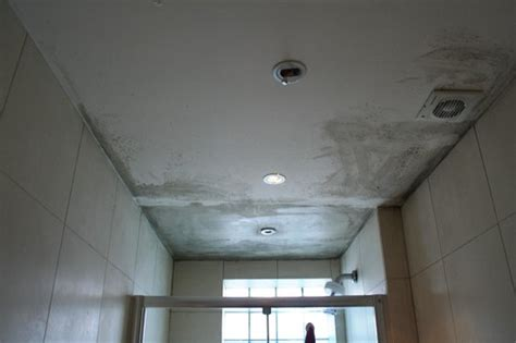 black mold on ceiling in bathroom black mold on ceiling and walls picture of 4 star hostel