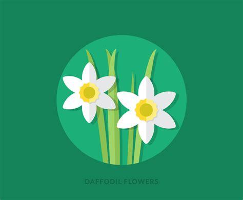 flat daffodil flowers vector art graphics freevector com