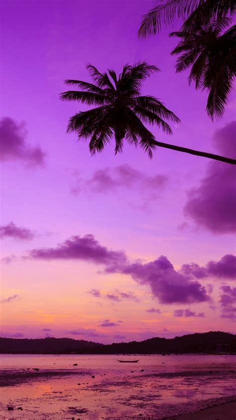 wallpaper thailand   wallpaper beach palms shore