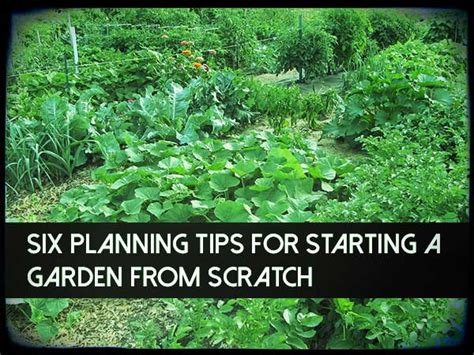 Starting A Garden From Scratch by Six Planning Tips For Starting A Garden From Scratch