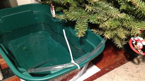 best way to water a christmas tree set up a siphoning water reservoir when leaving your tree for a few days