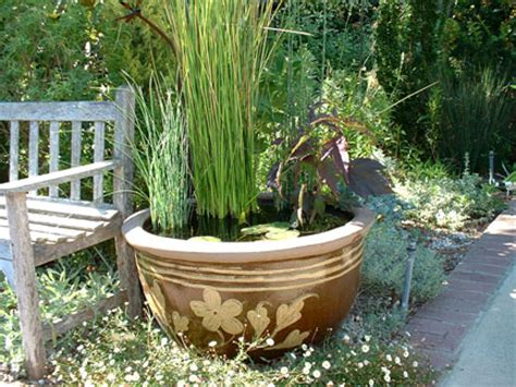 water gardening in containers container gardening sa greenfingers
