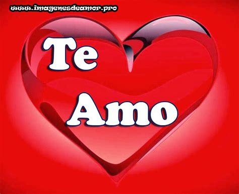 imagenes graciosas que digan te amo 17 best images about quot 161 te amo quot on pinterest amigos