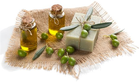 Sabun Olive olive in soap properties recipes lovin