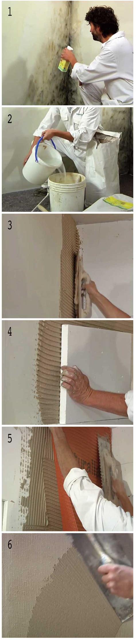 muffa pareti interne muffa sui muri come eliminarla sistematicamente