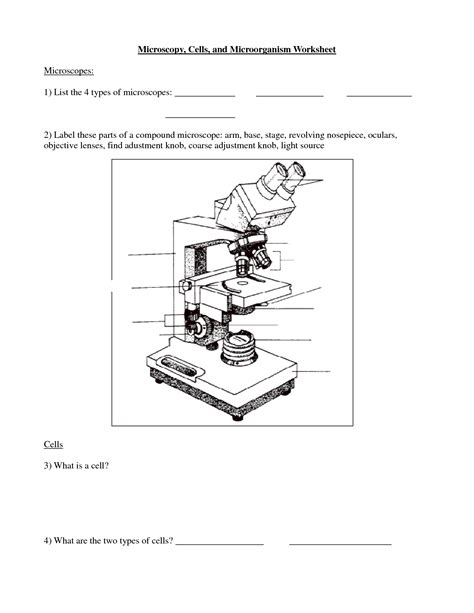 Parts Of A Microscope Worksheet Answers by 15 Best Images Of Printable Microscope Worksheet