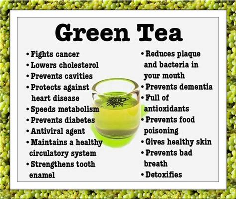 facts about green green tea facts tea pinterest