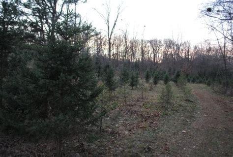 ralph linder st louis christmas tree farmer news blog
