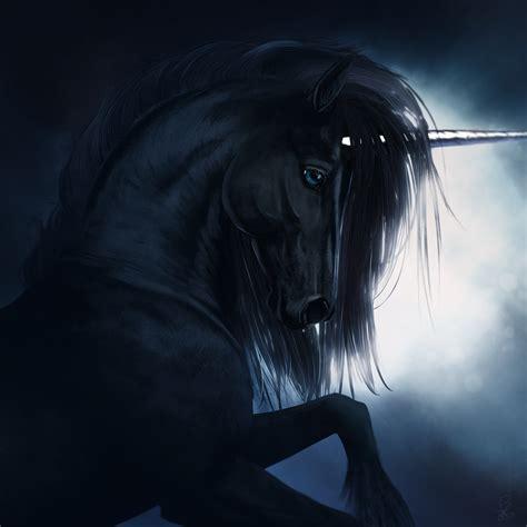 The Black Unicorn black unicorn www imgkid the image kid has it