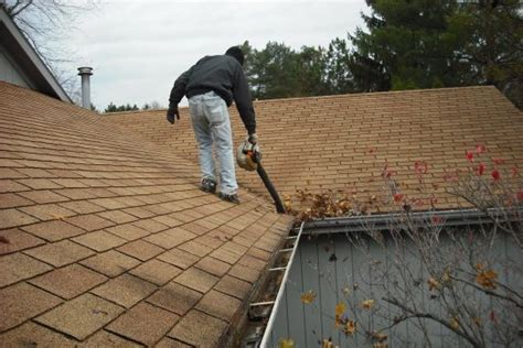 looking for something to clean gutters gutter cleaning for clean pro gutter cleaning