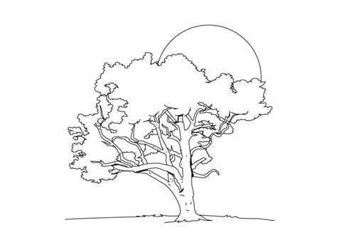 buckeye leaf coloring page free buckeye tree coloring pages