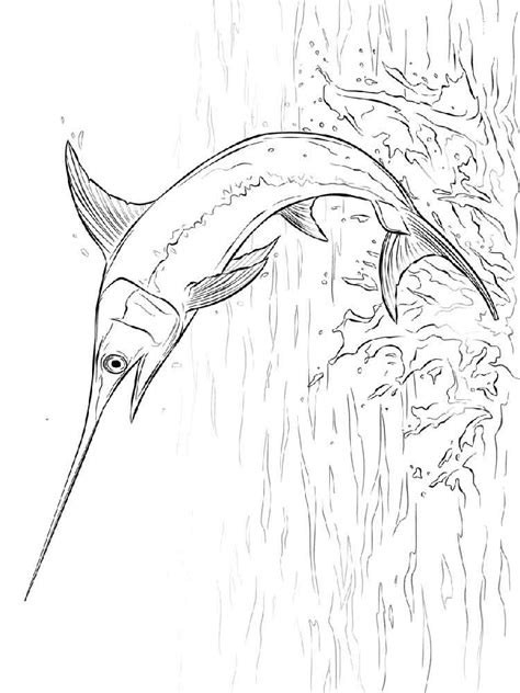 marlin fish coloring pages swordfish coloring pages download and print swordfish
