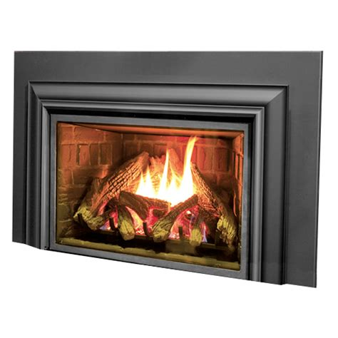 fireplace inserts options insert information types of
