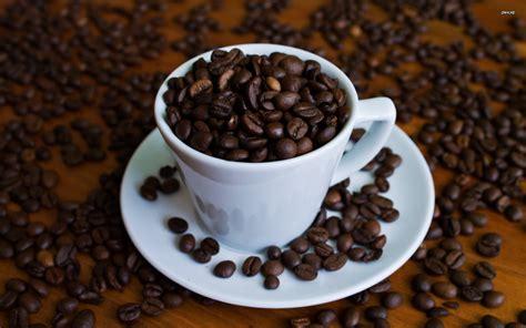coffee bean driverlayer search engine coffee bean driverlayer search engine