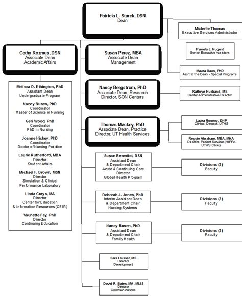 organization pattern of college of nursing school of nursing school profiles uthealth