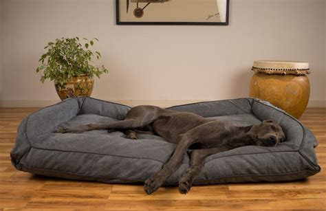 great dane dog bed image of dog beds for great danes as pets dog furniture