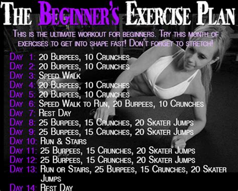 workout wednesday the beginner s exercise plan