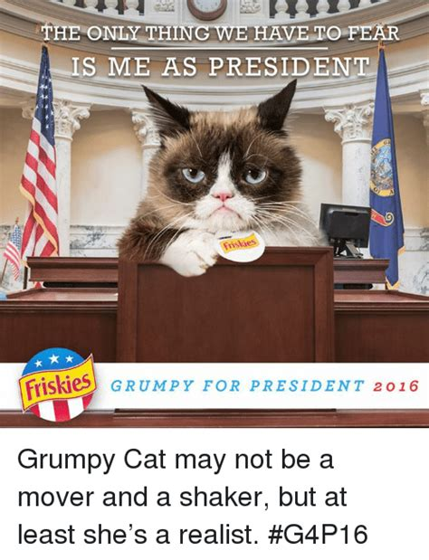 grumpy cat for president 2016 the only thing we to fear is me as president friskies