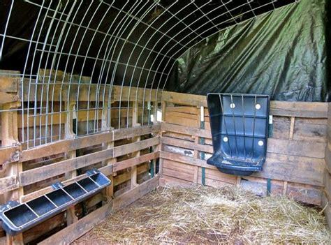 creative ways   cattle  panels homestead