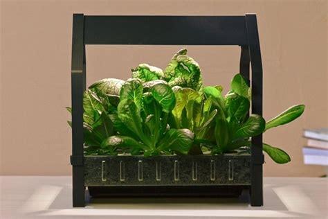 genius indoor hydroponic garden kit lentine marine