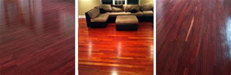 bloodwood hardwood flooring fantastic floor fantastic floor presents bloodwood
