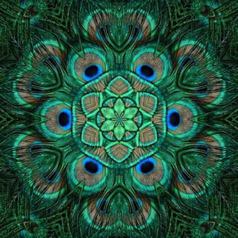 mosaic pattern peacock peacock pattern peacock love pinterest