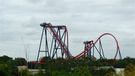 Sheikra At Busch Gardens by Top 10 Scary Roller Coasters In The U S Page 2